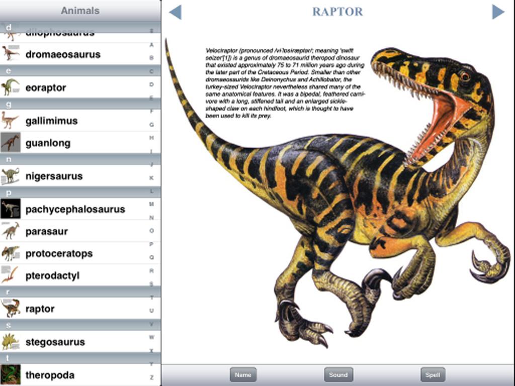 Dinosaur Discovery-1