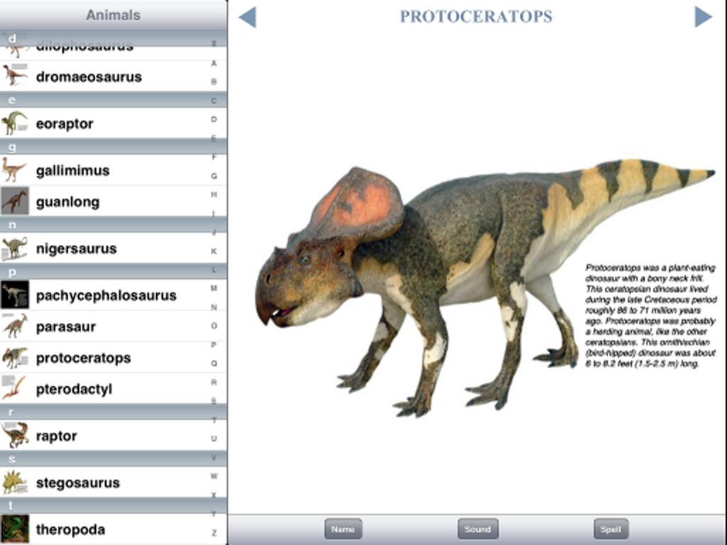 Dinosaur Discovery-2
