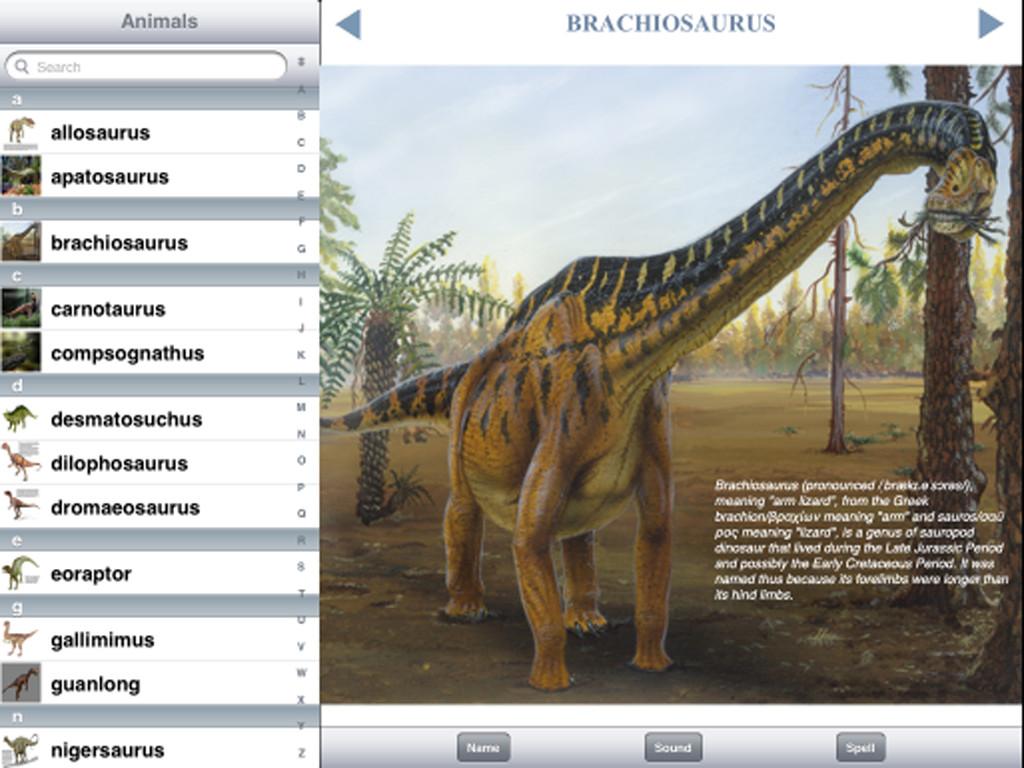 Dinosaur Discovery-3