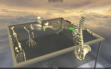Body Disassembly 3D App - 3