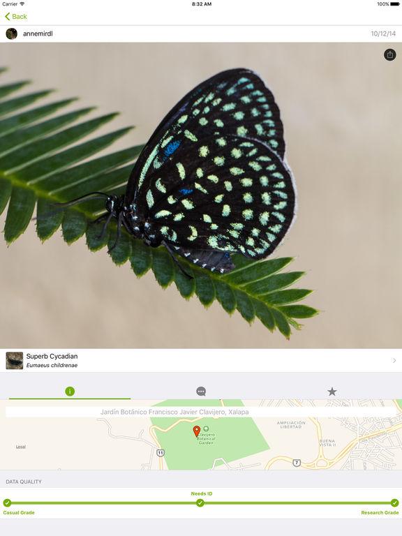 iNaturalist App - 1