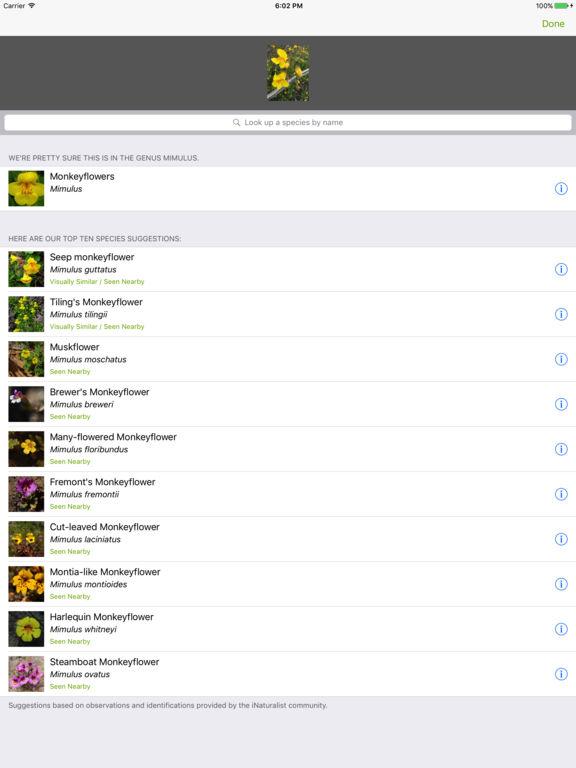 iNaturalist App - 2