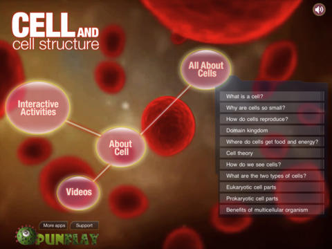 Cell and Cell Structure