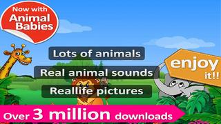Kids Zoo-1