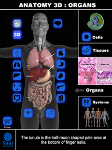 Anatomy 3D: Organs-2