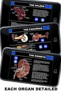 Anatomy 3D: Organs-5