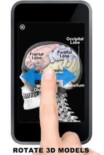 Anatomy 3D: Organs-10