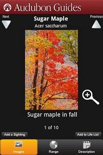 Audubon Trees App - 2