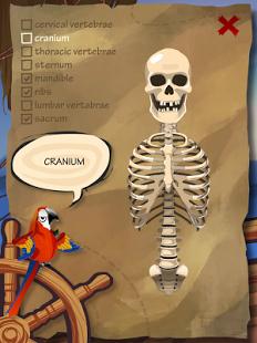 Whack A Bone App - 3