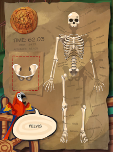 Whack A Bone