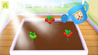 Yipy Garden Farm-2