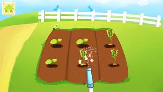 Yipy Garden Farm-5