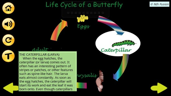 A Life Cycle App-3