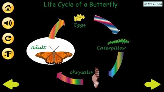 A Life Cycle App-4
