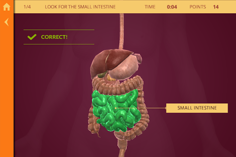 Anatomy | The Human Body-5