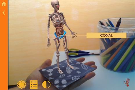 Anatomy | The Human Body-7