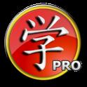 Chinese HSK 1 pro