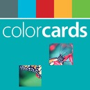 What Can You See? - ColorCards