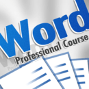 Professional Course for Microsoft Word 2010