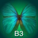 iBiology B3