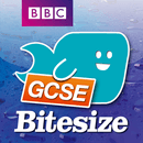 GCSE Business Studies Bitesize Last-minute Learner