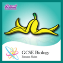 Building atoms ions and isotopes review educational app store gcse biology banana skins revision flash cards robcynllc Image collections
